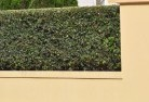 Acacia Creek Decorative fencing 30
