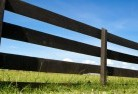 Acacia Creek Farm fencing 5
