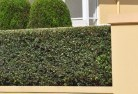 Acacia Creek Privacy screens 30
